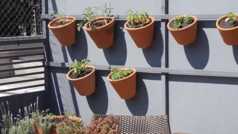 horta vertical em vasos de barro 1 490x276 Horta VERTICAL para casa ou apartamento ( tipos, como fazer )