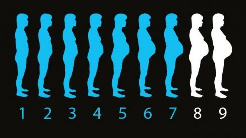 gesta%C3%A7%C3%A3o barriga mes a mes 490x276 O Tamanho da barriga mês a mês na gravidez, conheça